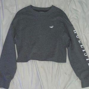 Grey Hollister Cropped Sweatshirt